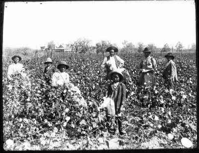 BBKing cotton_farming_family