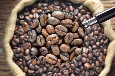 cafe com lupa